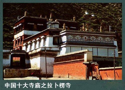 中国十大寺庙 - yangwei8240 - 浙江省义乌市娇子1对1中心欢迎你